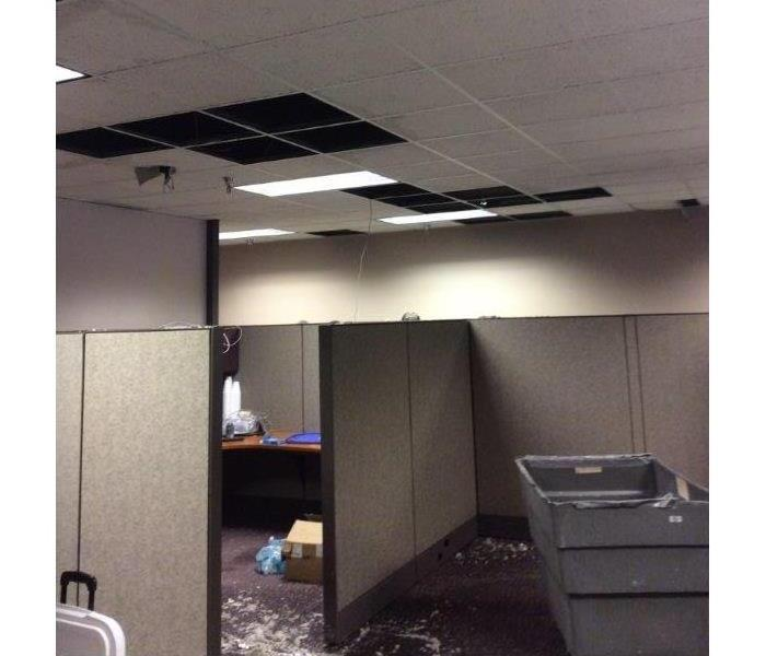 The Ceiling caved in!