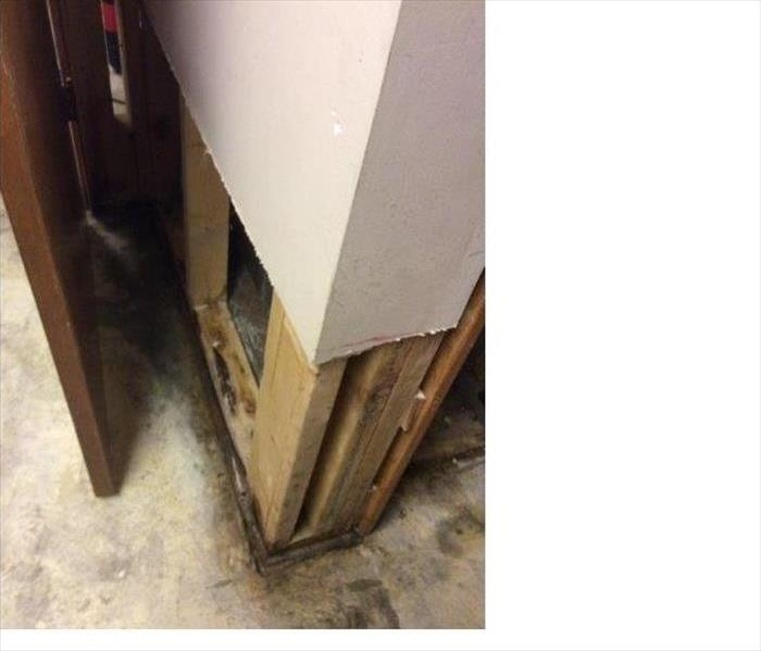 Mold Remediation Does Your Jefferson City, Missouri Area Home Have A Mold Problem?