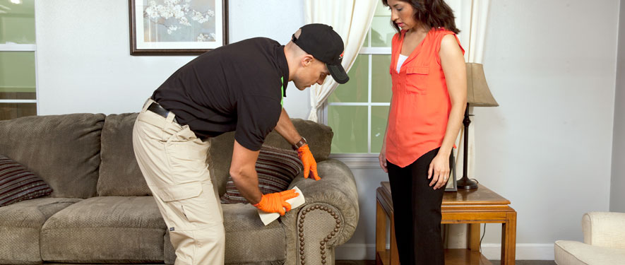 Jefferson City, MO carpet upholstery cleaning
